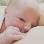 newborn, breastfeeding